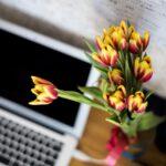 Květiny v kanceláři I.