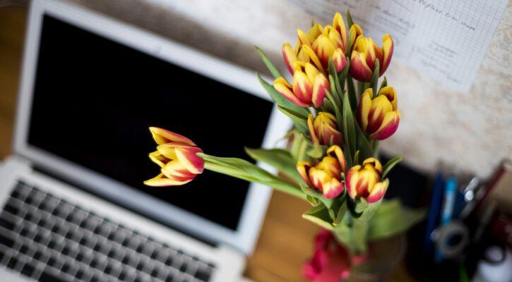 Květiny v kanceláři