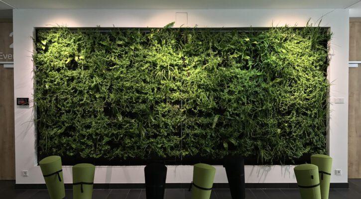 Zelená do kanceláře